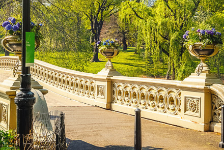 Things To See in Central Park: Bow Bridge